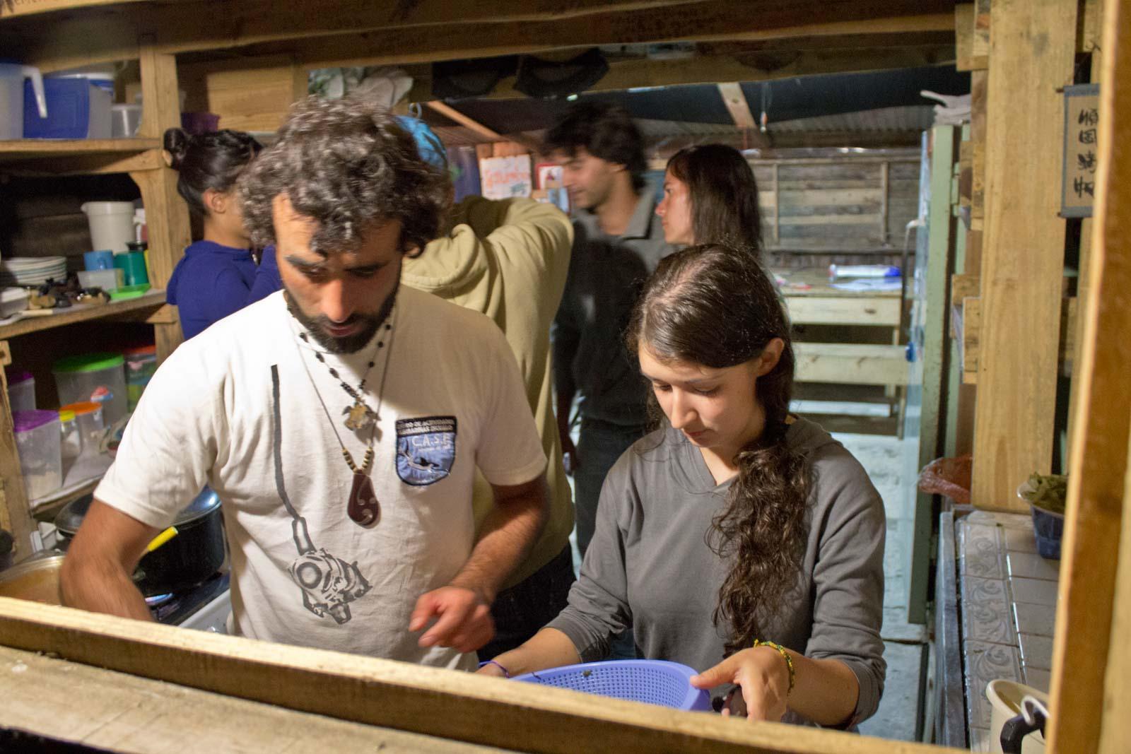 Turtles in Uruguay, Volunteering at Karumbe