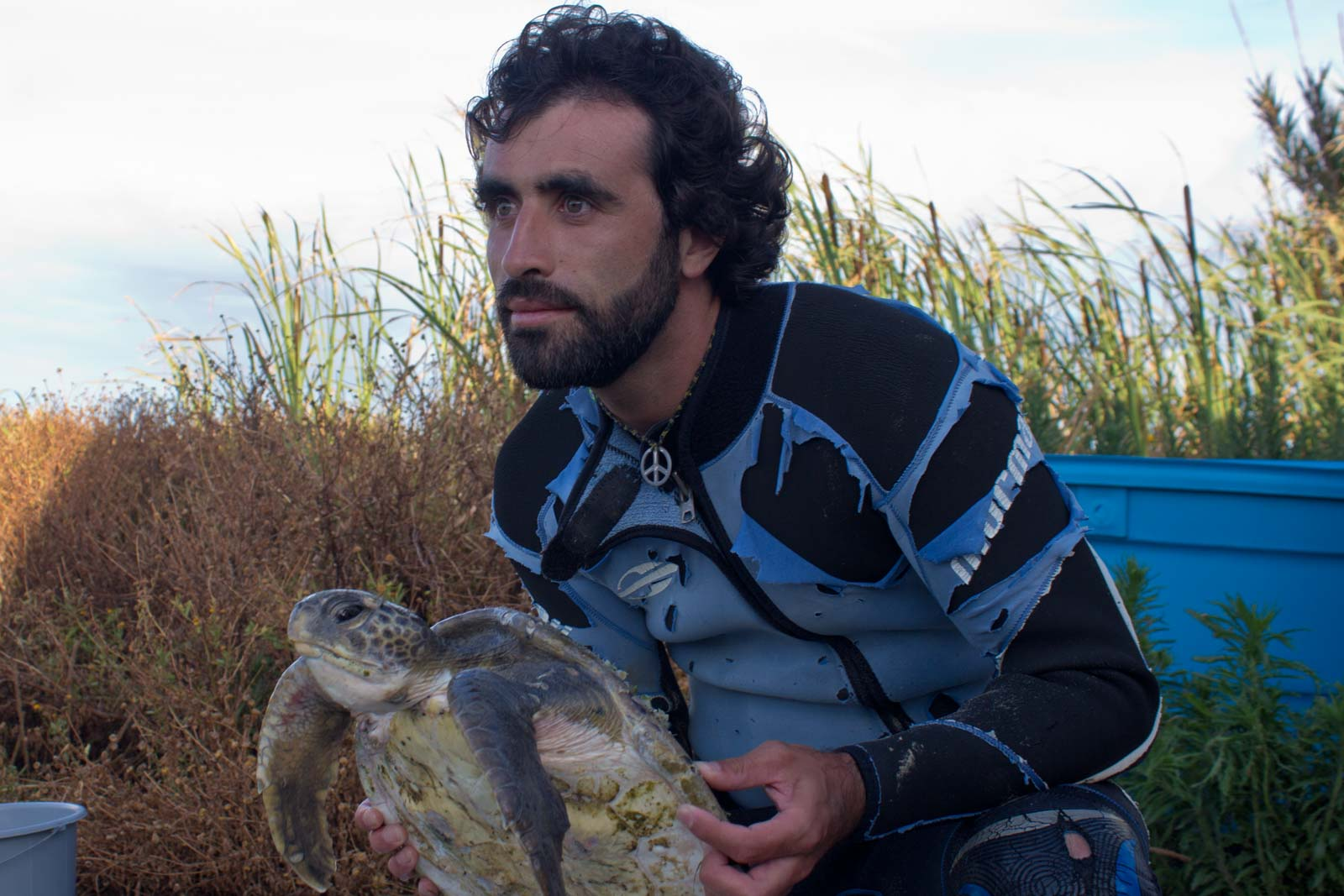Turtles in Uruguay, Volunteering at Karumbe