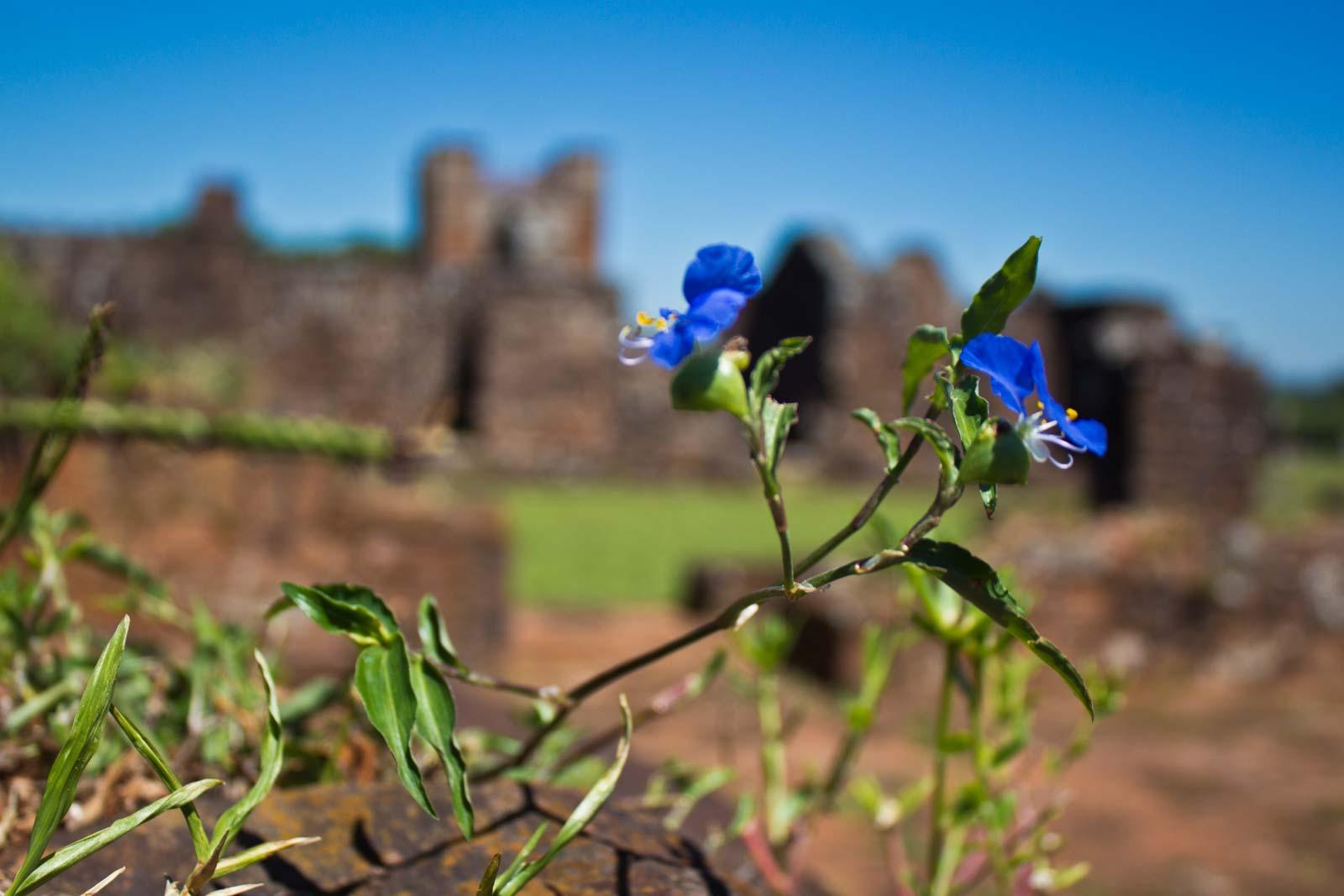 paraguay, jesuit ruins, trinidad, jesus, unesco world heritage site