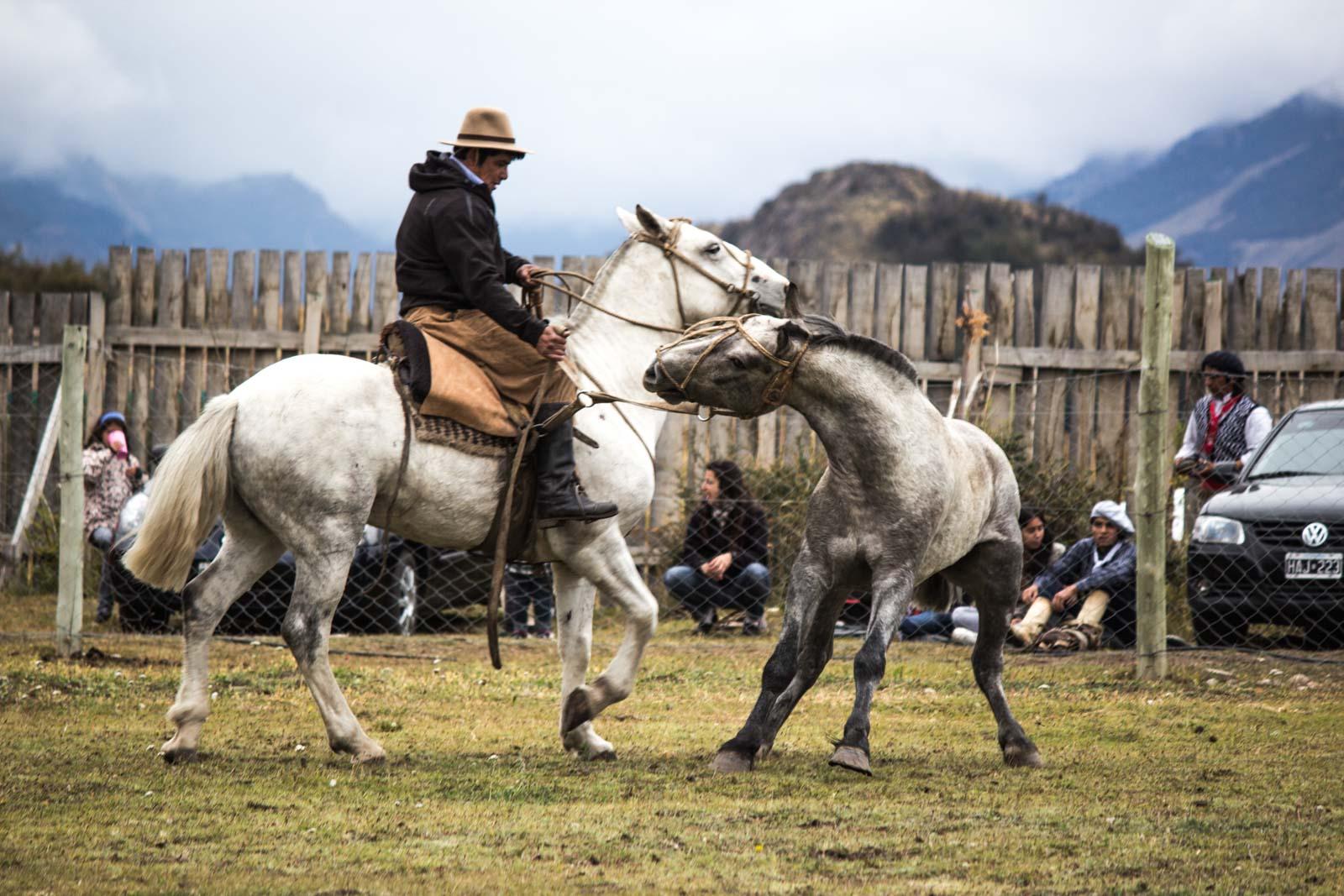 argentinian rodeo, gauchos, horses, patagonia, el chalten