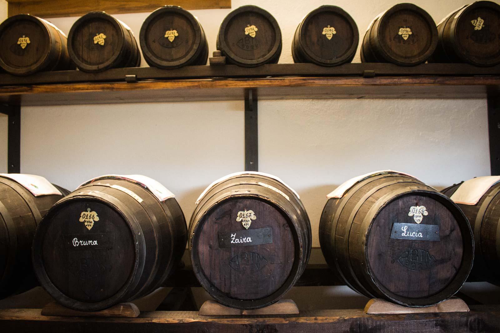 best balsamic vinegar in Modena, Italy