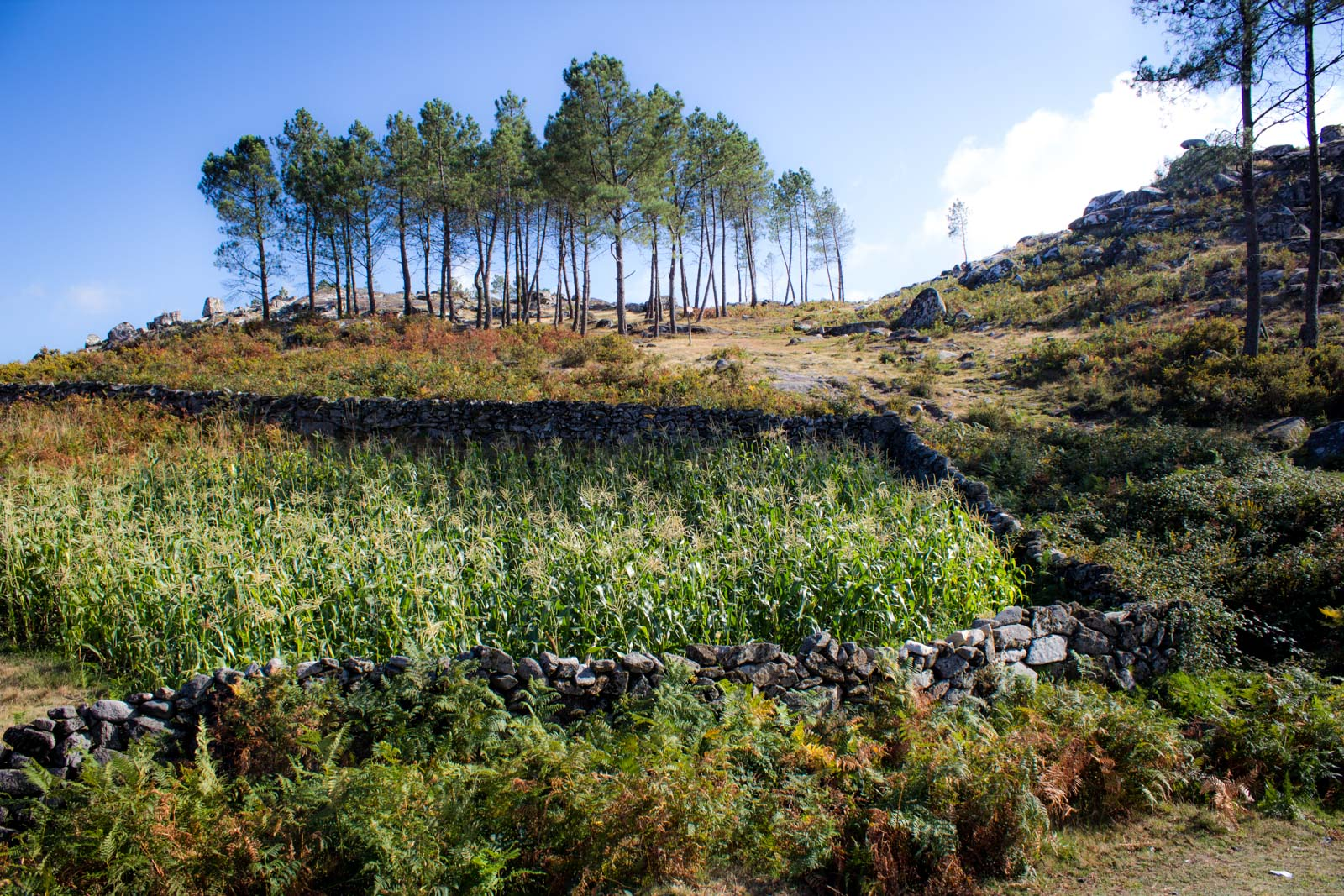 Arouca Geopark in Portugal, Things to do near Porto
