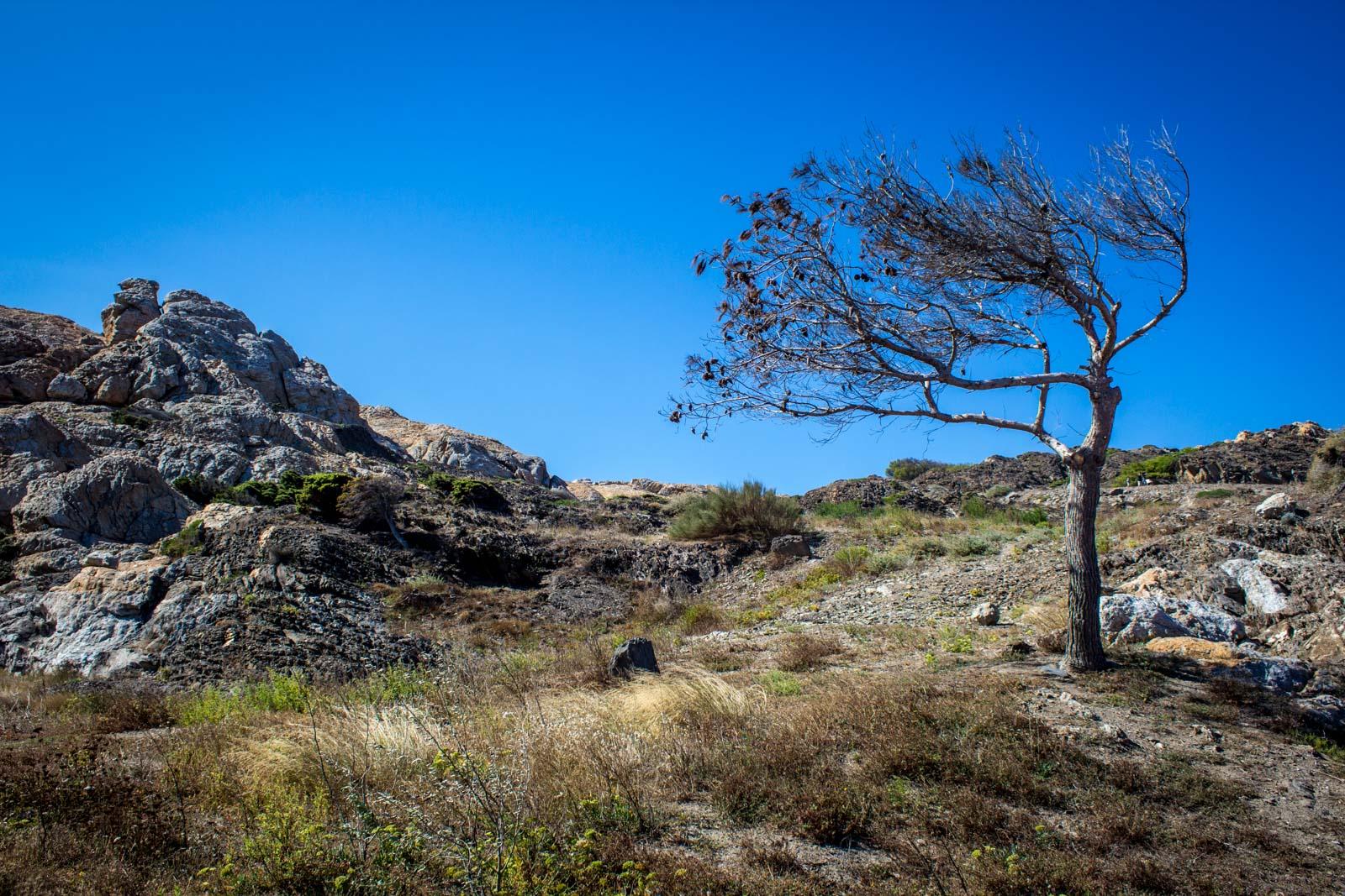 cap de creus, natural park, catalonia, spain, salvador dali inspiration