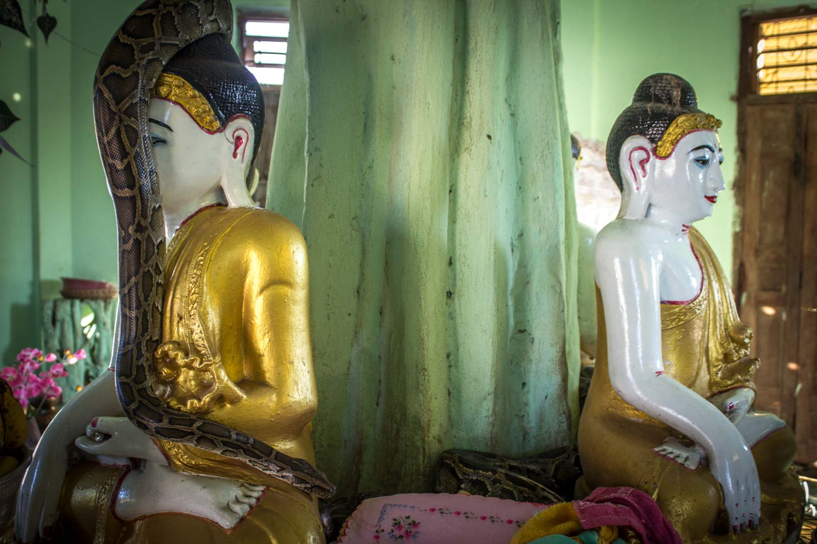 Getting to Twante from Yangon, Snake Temple, Myanmar