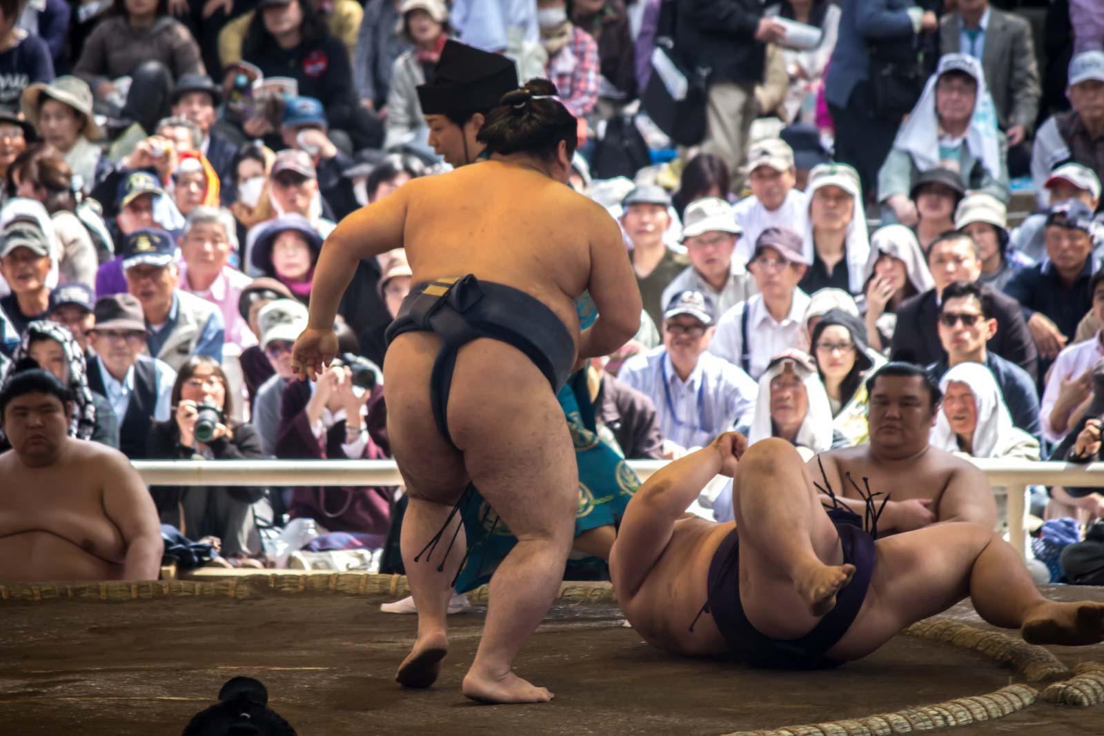 sumo in japan, sumo tournament, yasukuni shrine, tokyo, japan, sumo wrestlers