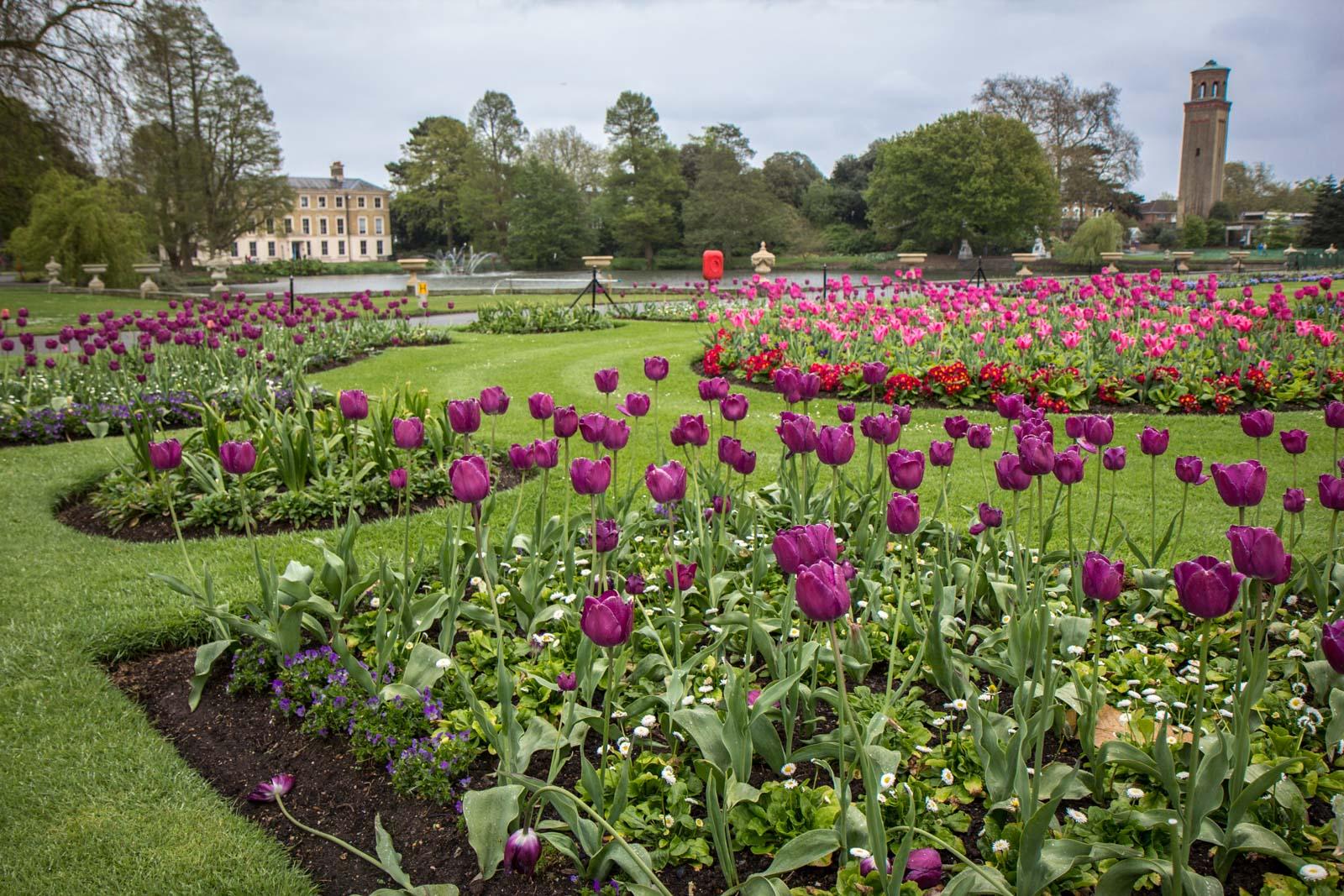 Visiting Kew Gardens, London, England