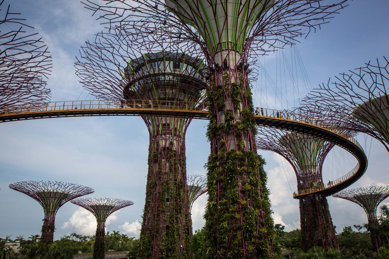 Photos of Singapore
