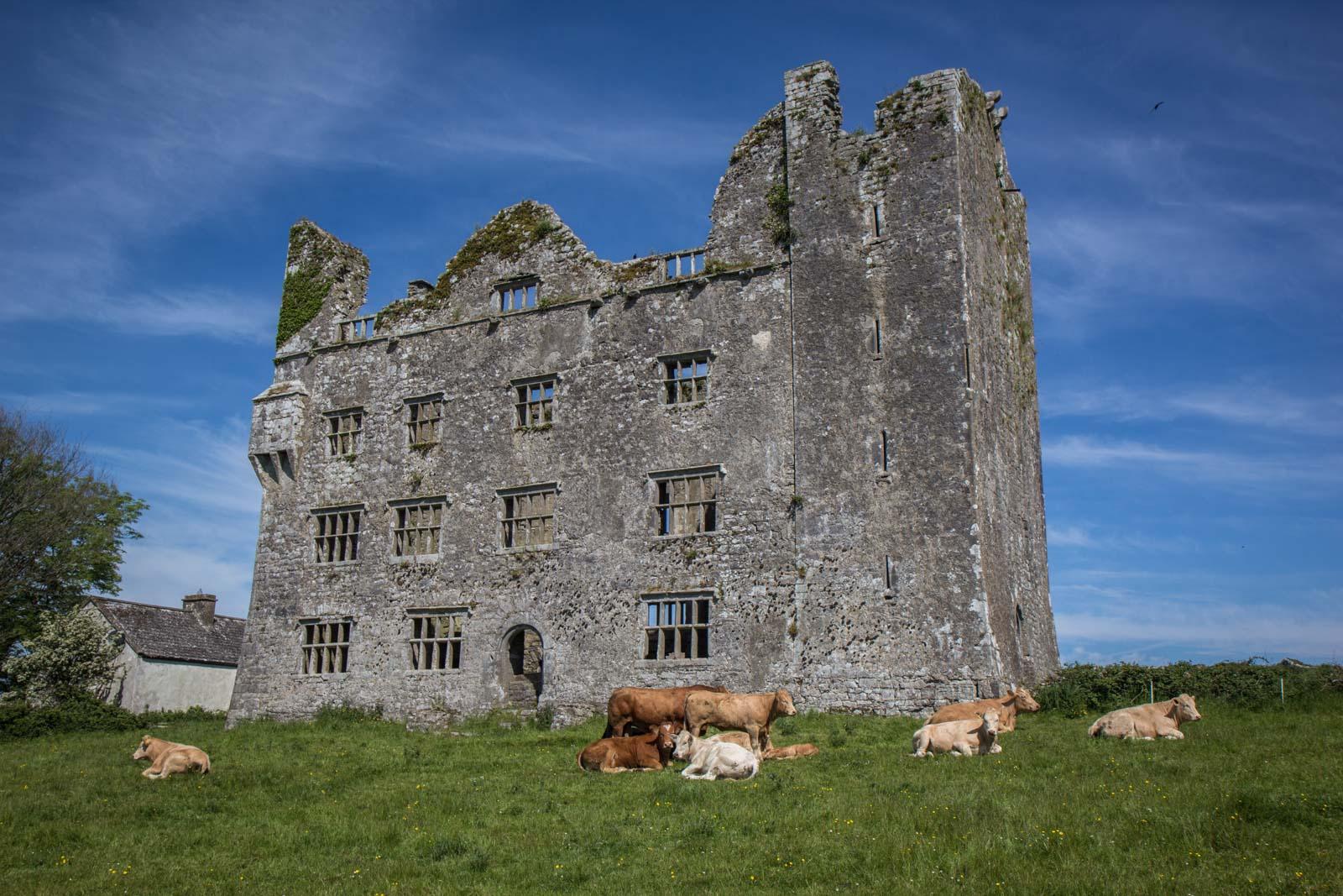 Ireland, countryside, sun, blue skies, beautiful Ireland photos
