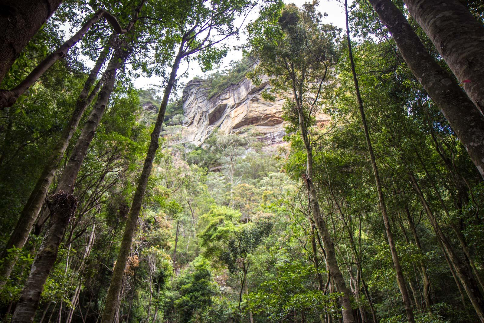 Visiting Blue Mountains, NSW, Australia