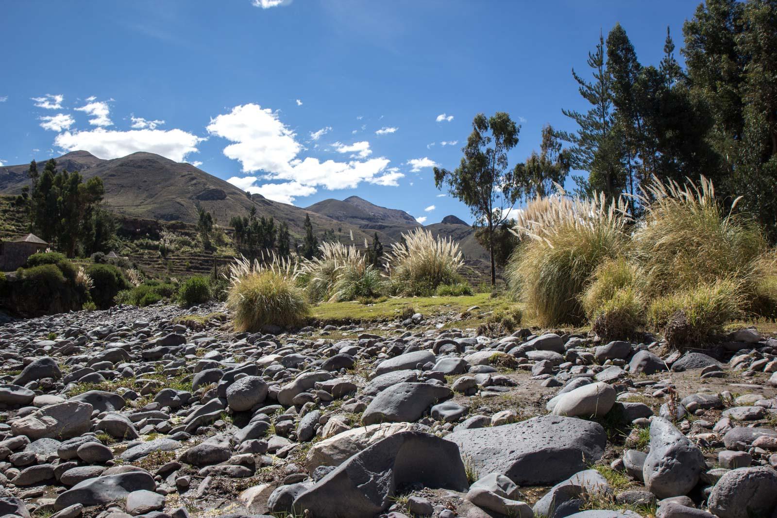 Visiting Colca Canyon, Peru