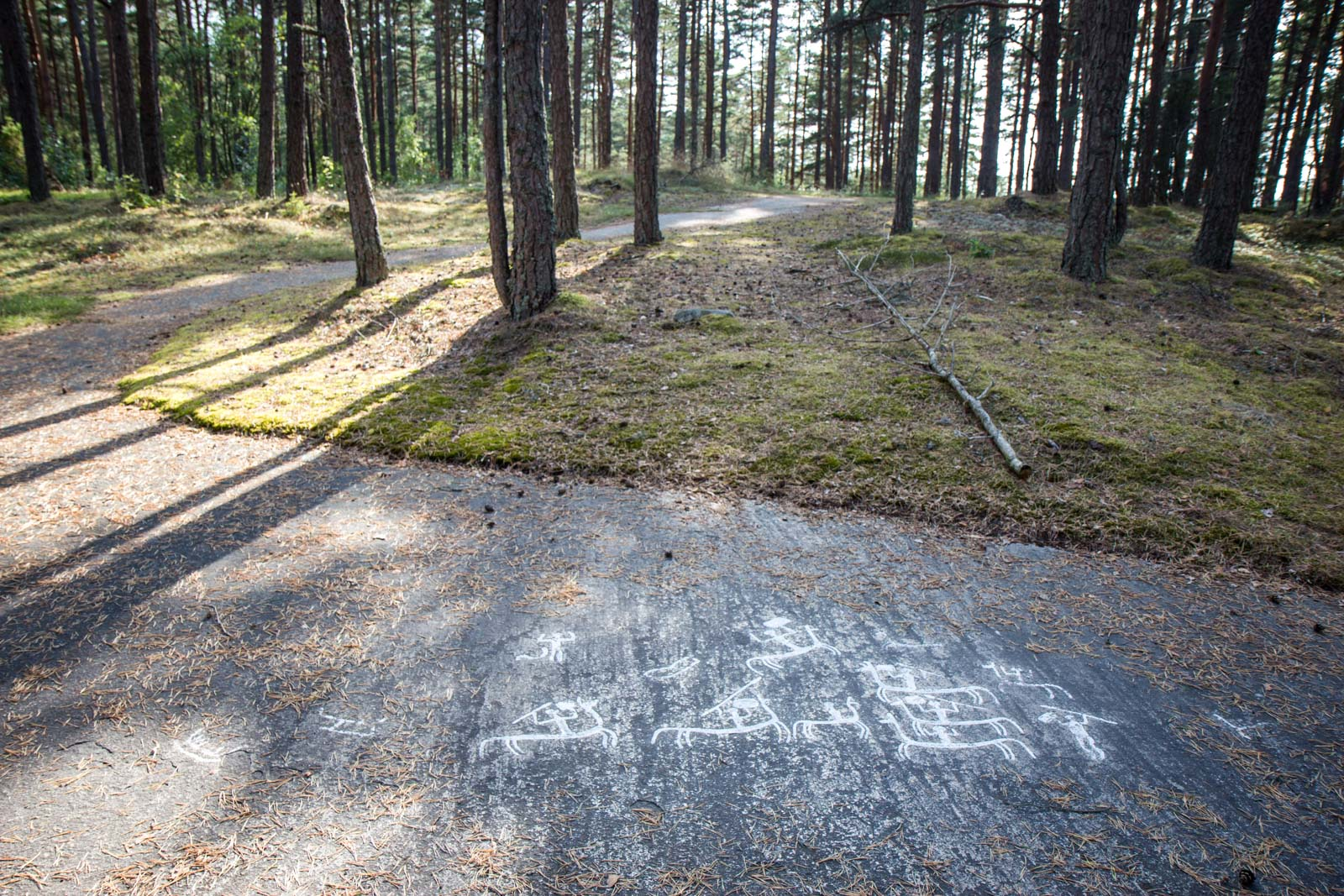 Tanum rock carvings, Bohuslän, Sweden