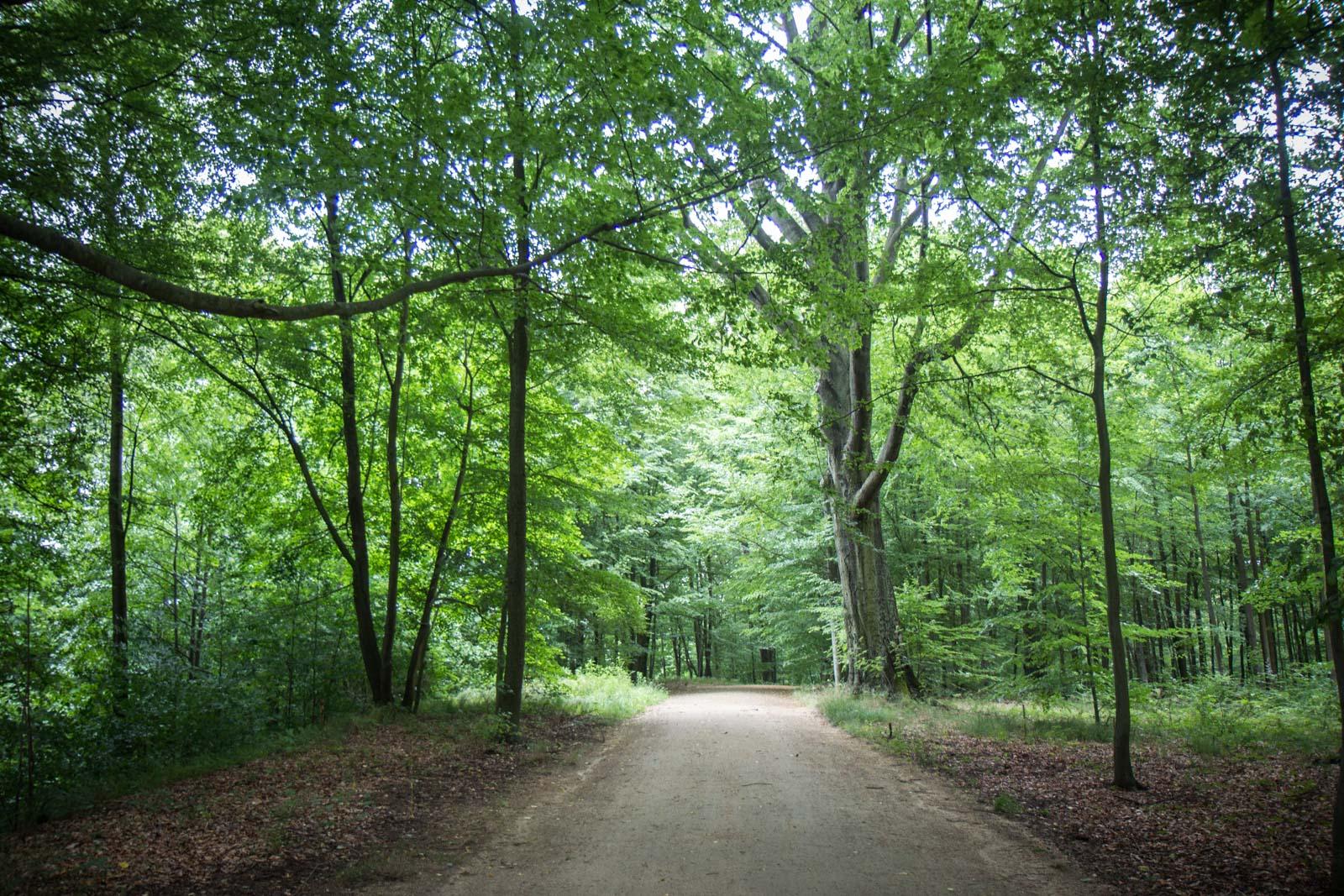 Muskauer Park, Bad Muskau, Germany