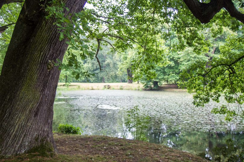 Muskauer Park, Bad Muskau, Germany