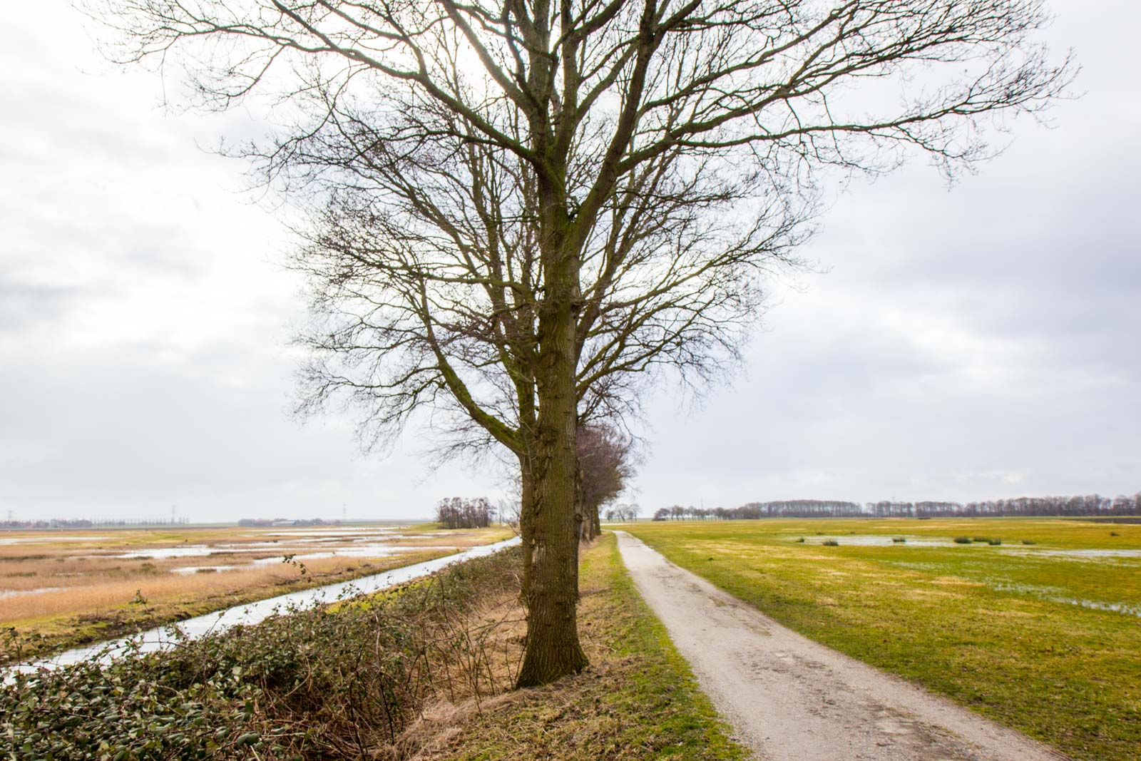 Schokland World Heritage Site, The Netherlands