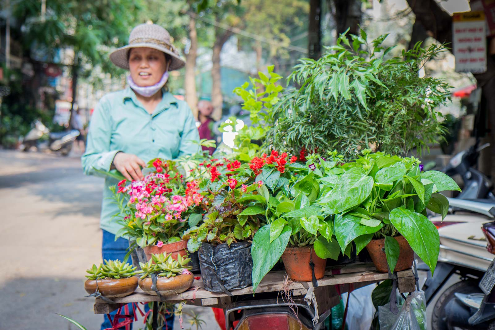 Prettiest Street in Hanoi, Vietnam