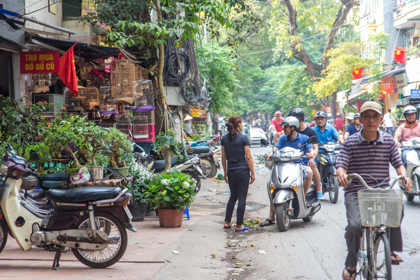 Prettiest Street in Hanoi, Vietnam