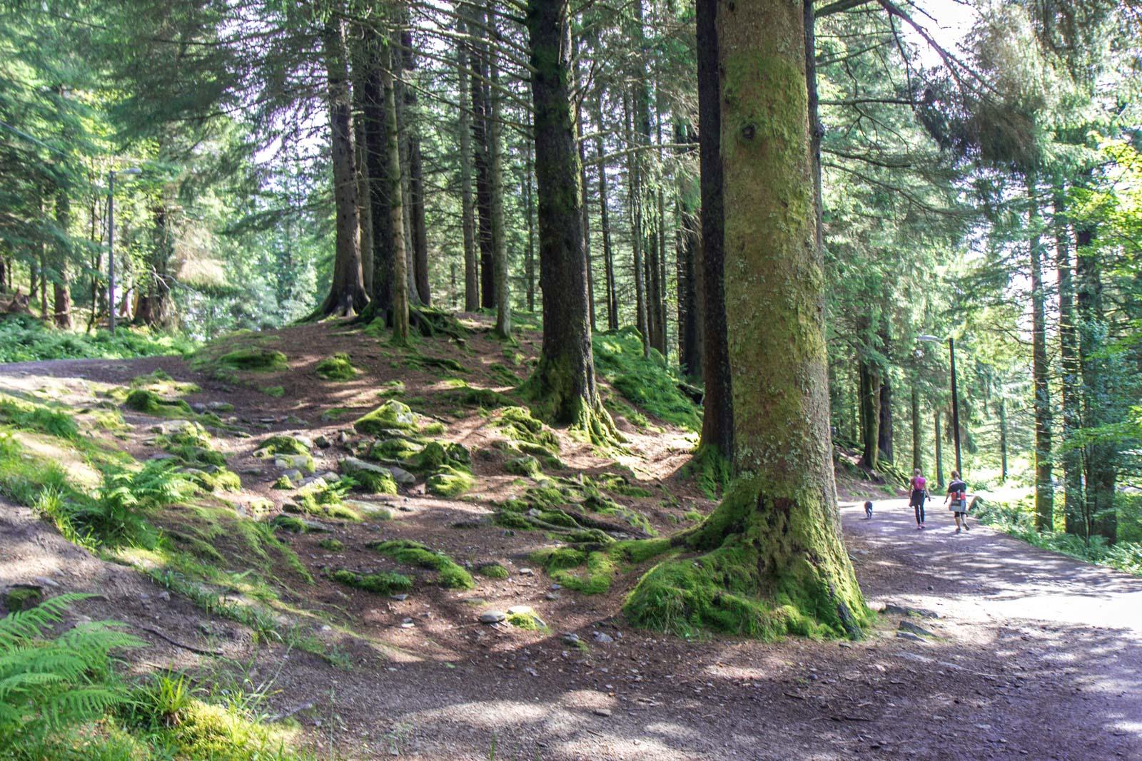 Hiking around Bergen, Norway