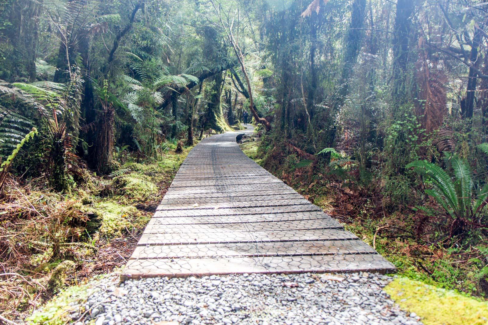 Monro Beach walk, South Island, New Zealand