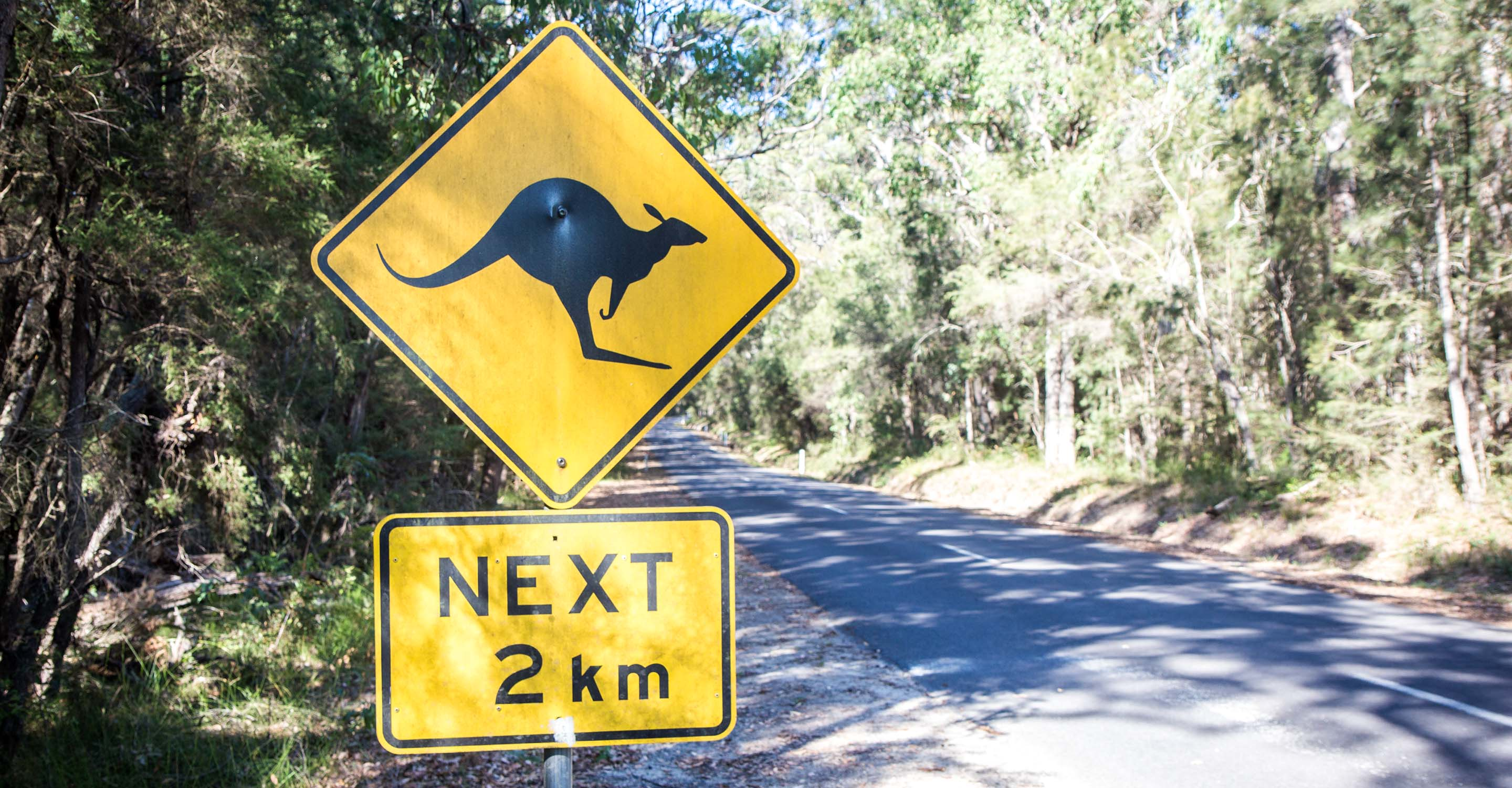 Melbourne to Sydney road trip: your complete day-by-day guide