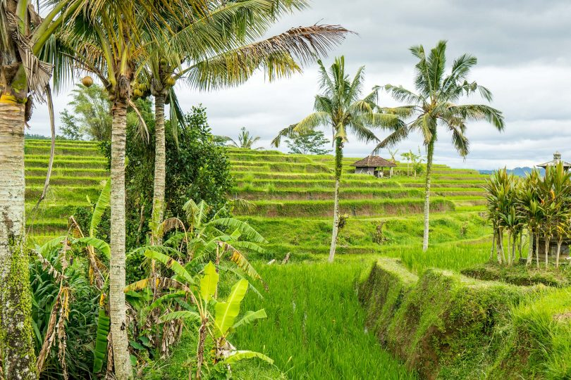Bali World Heritage Site, Indonesia