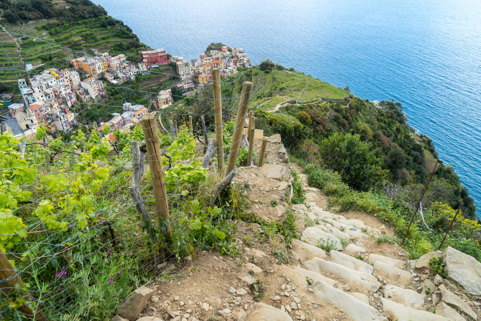 A Guide For Hiking The Cinque Terre In Italy