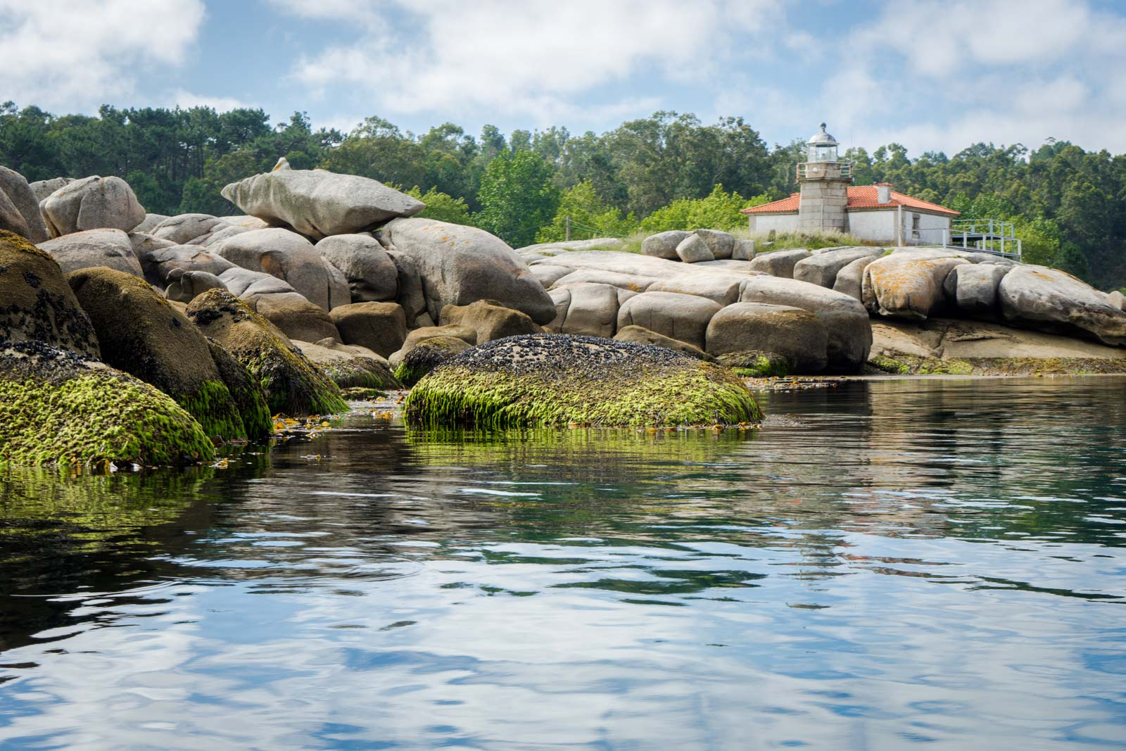 Mussel Farming, Arousa, Spain