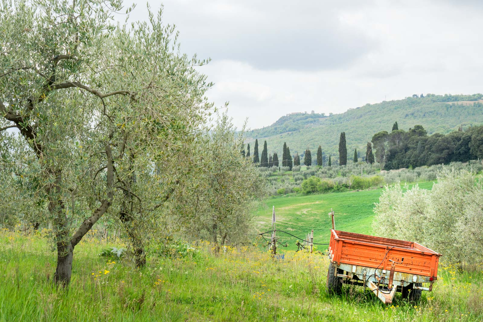 Walking in the Val d'Orcia, Tuscany, Italy