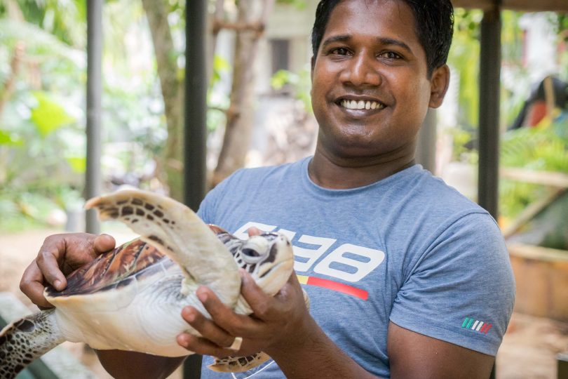 Sri Lanka's threatened turtles