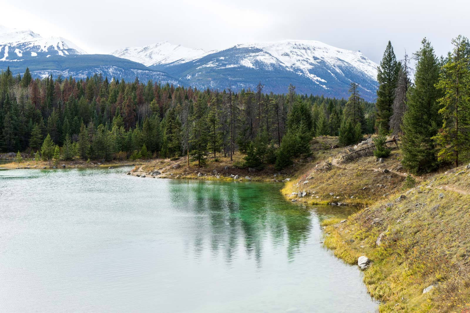 Valley of the Five Lakes, Jasper, Alberta, Canada