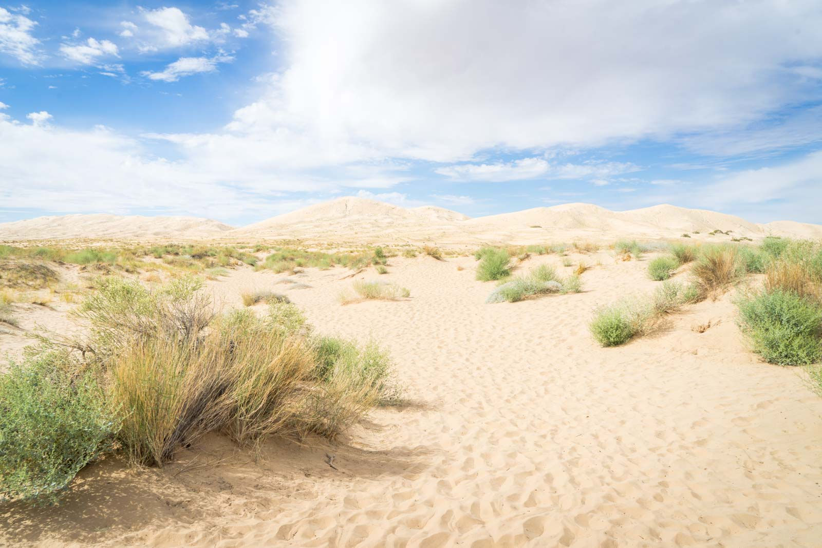 Kelso Dunes, Mojave National Preserve, California, USA