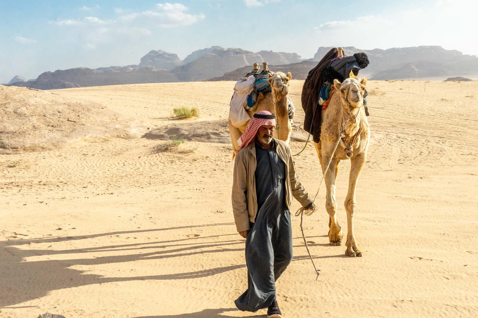 Camels at Wadi Rum, Jordan