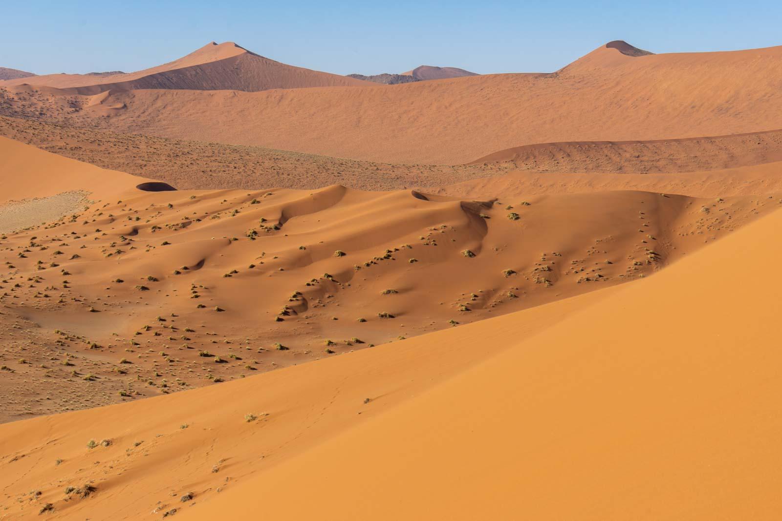 Dune 45, Sossusvlei, Namibia