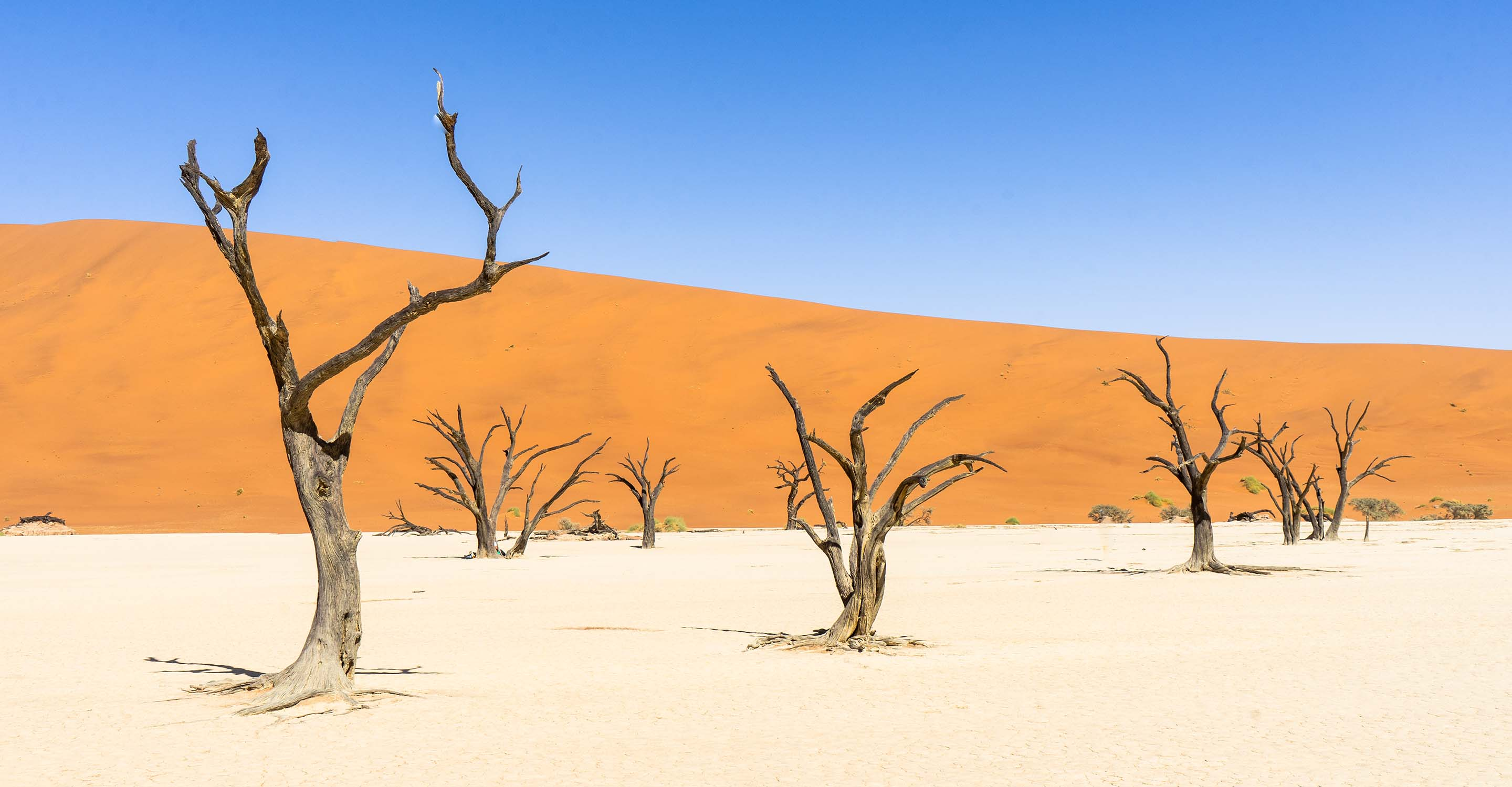 Visiting the stunning Deadvlei at Sossusvlei in Namibia