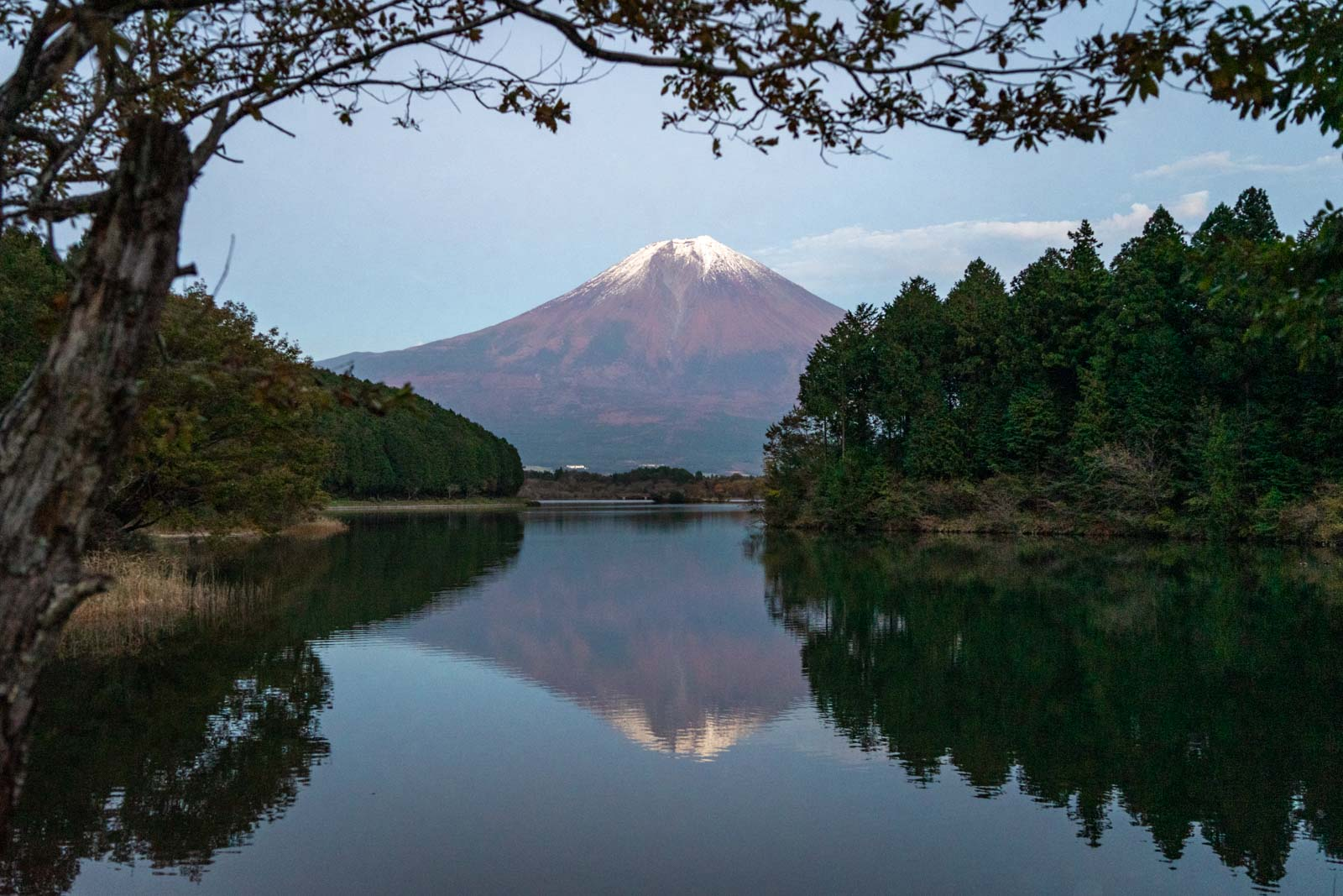 Lake Tanuki, Fuji, Japan