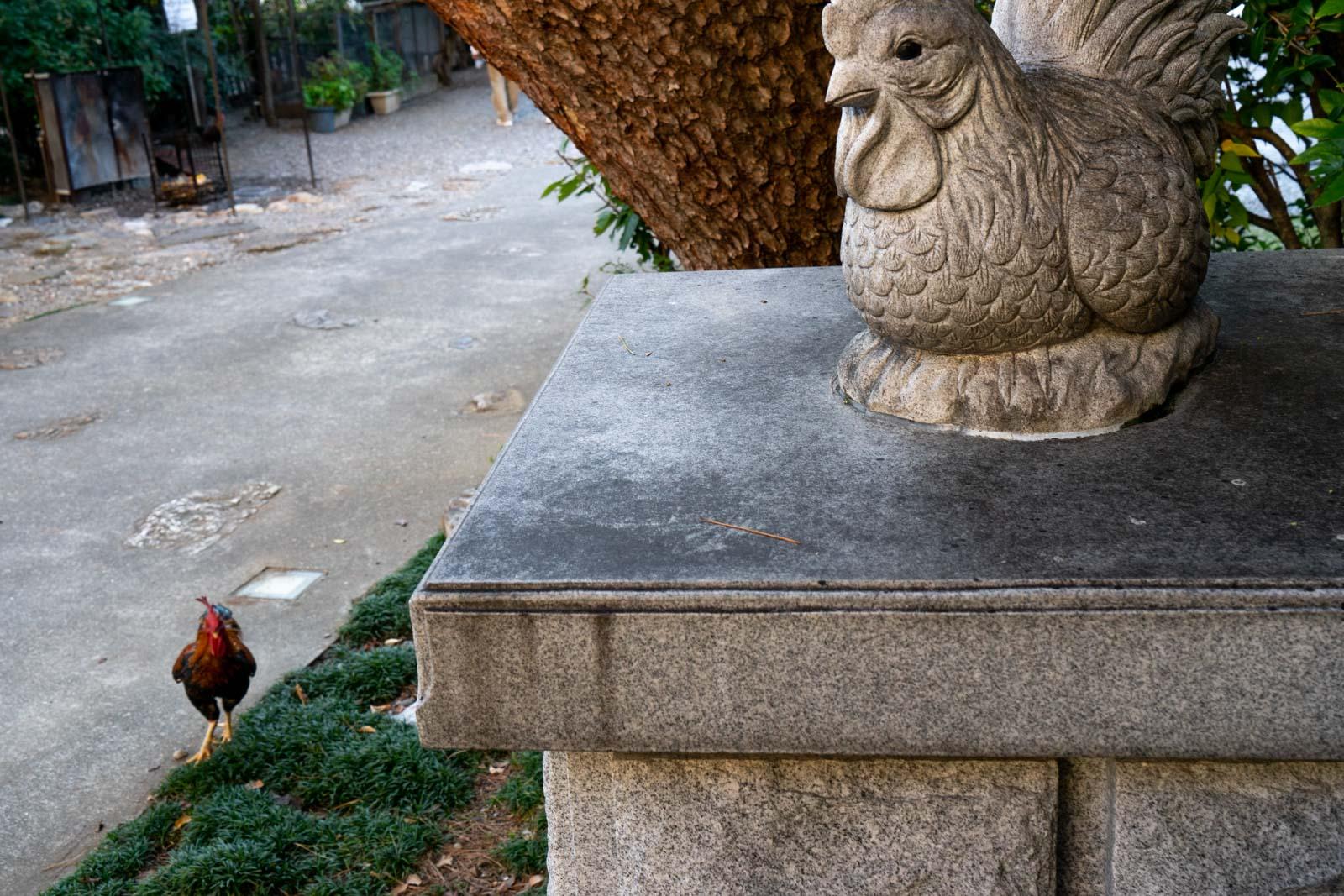 Yosakoi Inari Shrine, Kochi City, Japan