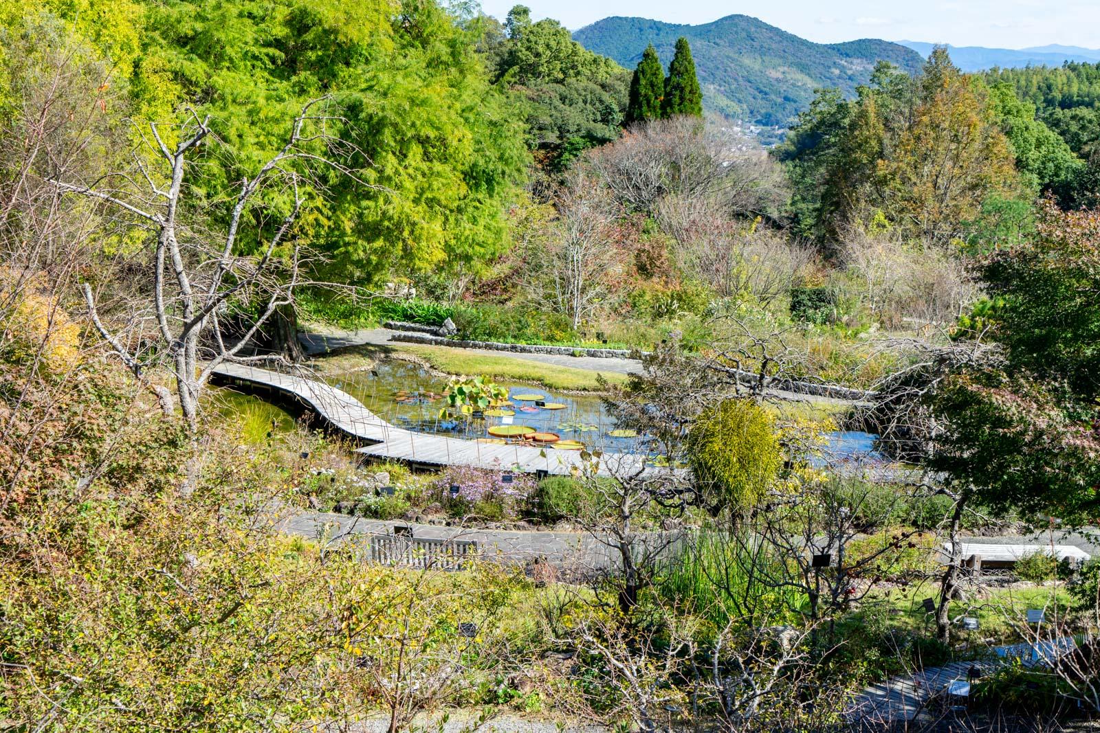 Makino Botanical Garden, Kochi City, Japan