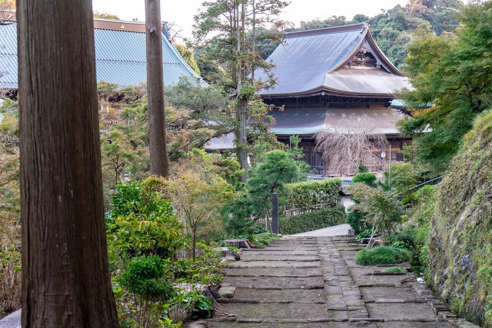 Things to do in Kamakura, Japan