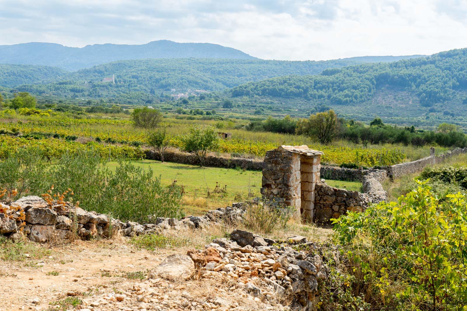 Stari Grad Plain, Hvar, Croatia